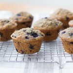 Blueberry Oatmeal Chia Milk-Making Muffins