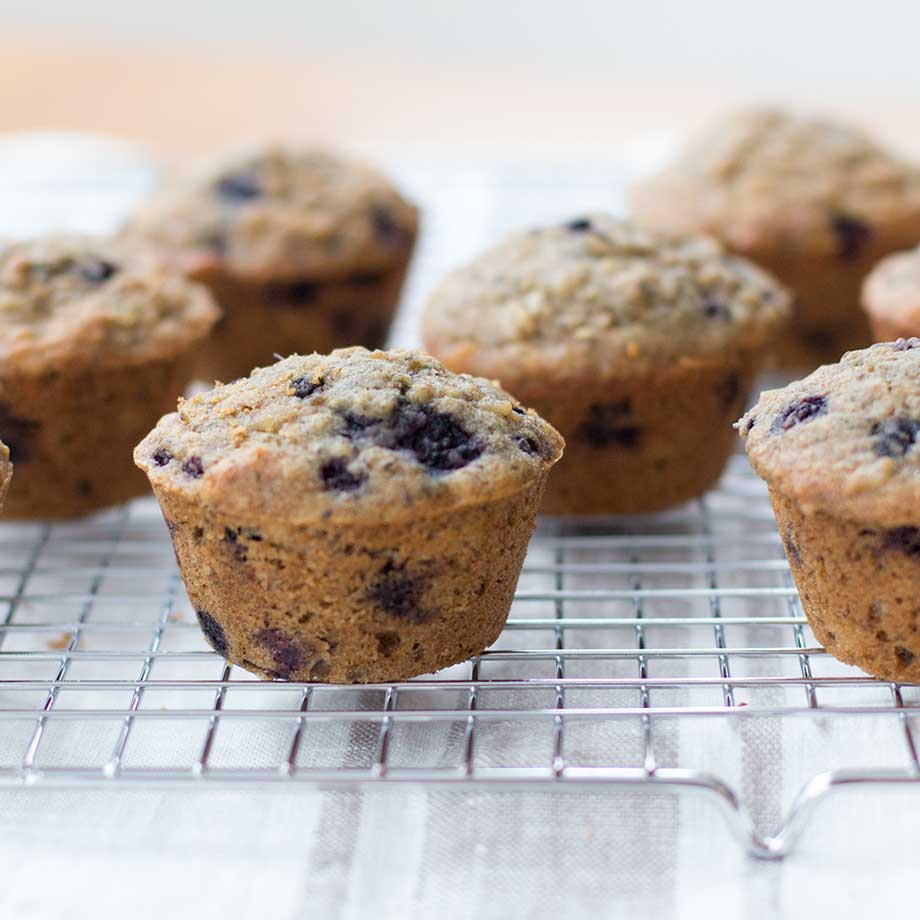 Blueberry Oatmeal Chia Milk-Making Muffins | (Cooking for) Kiwi & Bean